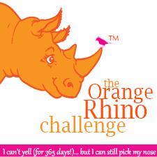 Reto El Rinoceronte naranja